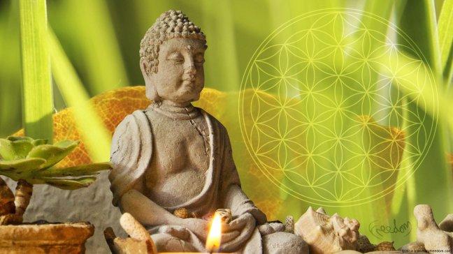 wallpaper-life-flowe-beautiful-flower-meditation-buddha-grass