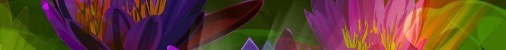 cropped-purplelotus1.jpg